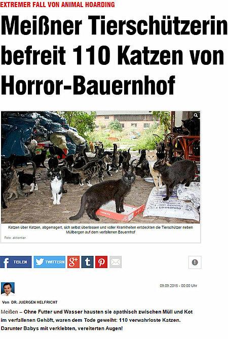 """BILD Dresden   9. September 2015   """"Meissner Tierschützerin befreit 110 Katzen von Horror Bauernhof"""""""