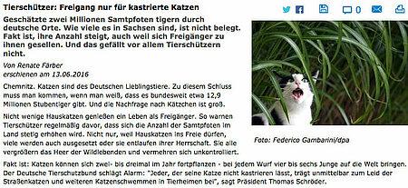 """Freie Presse   13. Juni 2016   """"Tierschützer: Freigang nur für kastrierte Katzen"""""""