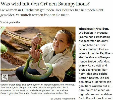"""Sächsische Zeitung   19. September 2017   """"Was wird mit den Grünen Baumpythons?"""""""