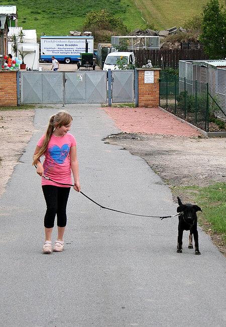 Kinder sollen den respektvollen Umgang mit Tieren lernen.