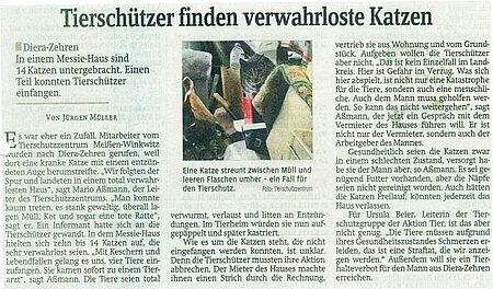"""Sächsische Zeitung   14. März 2014   """"Tierschützer finden verwahrloste Katzen"""""""