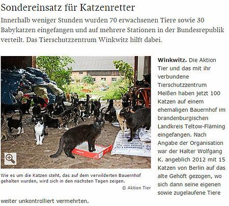 """SZ   20. August 2017   """"Sondereinsatz für Katzenretter"""""""
