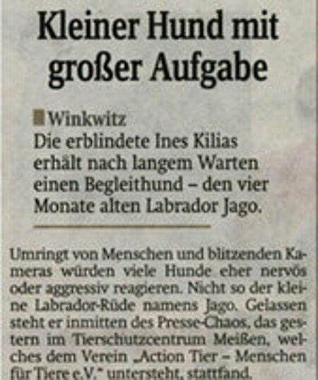 """3. Mai 2013   """"Kleiner Hund, große Aufgabe"""""""