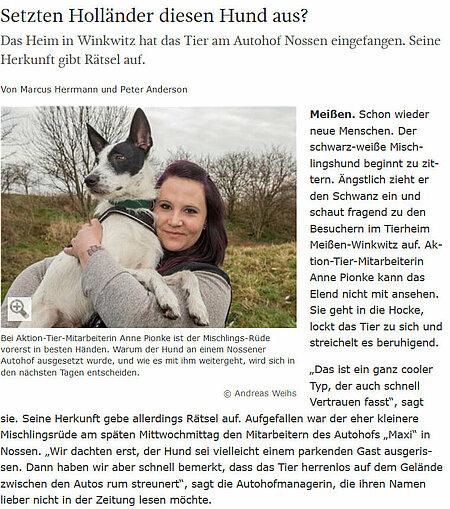 """Sächsische Zeitung   04. März 2016   """"Setzten Holländer diesen Hund aus?"""""""
